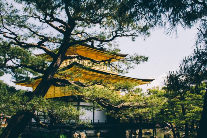 Faire un voyage au Japon et découvrir une nouvelle culture