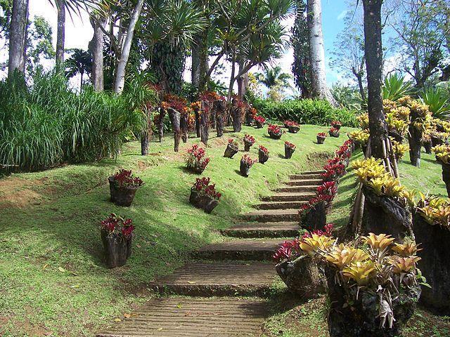 visite jardin de balata