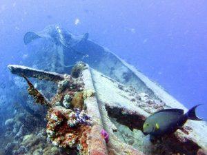 épave du SS Yongala