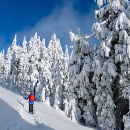 Séjour ski au Canada : les formalités et sites incontournables